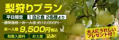nashi_plan_1_1.jpg